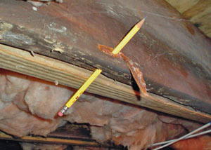 Destroyed crawl space structural wood in Parachute
